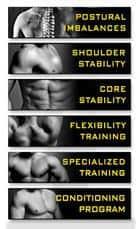 No Nonsense Muscle Building Posture