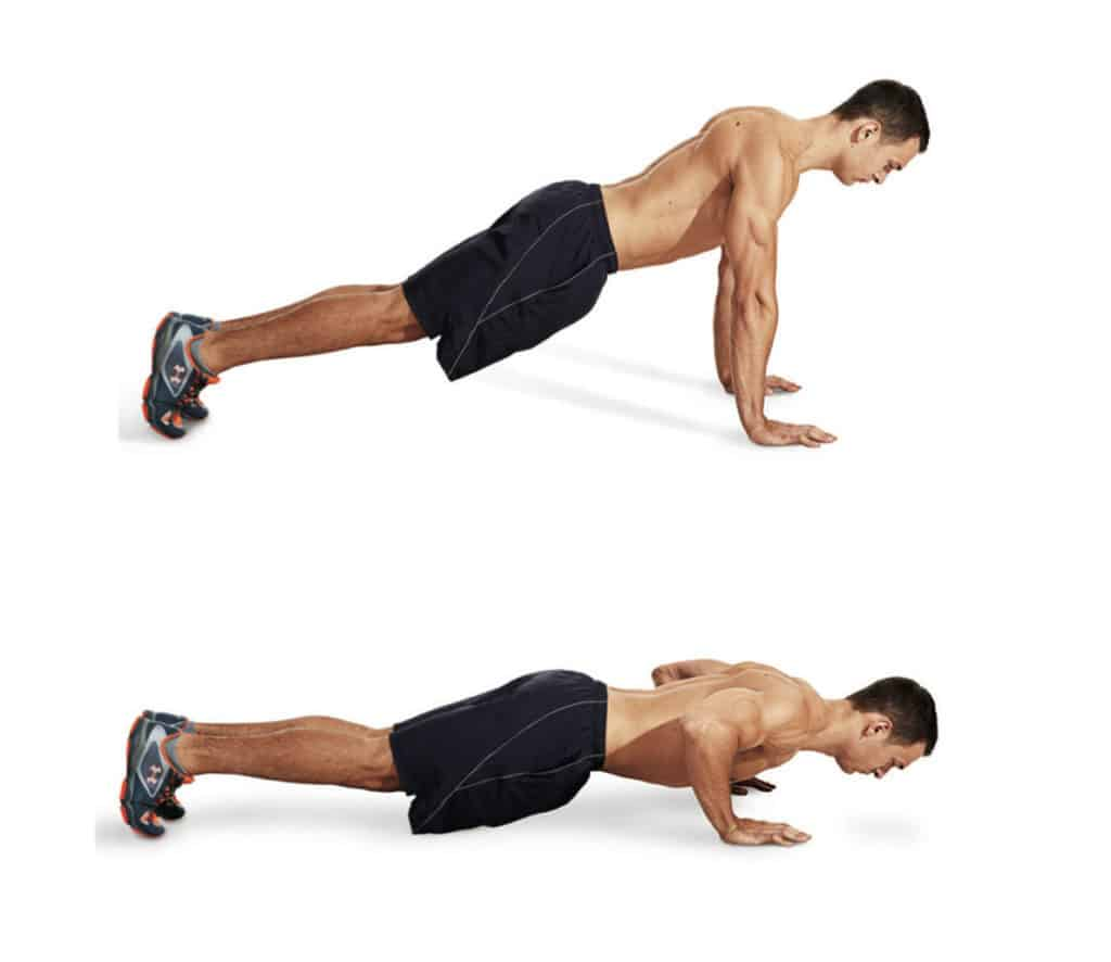 The Muscle Experiment Pushups