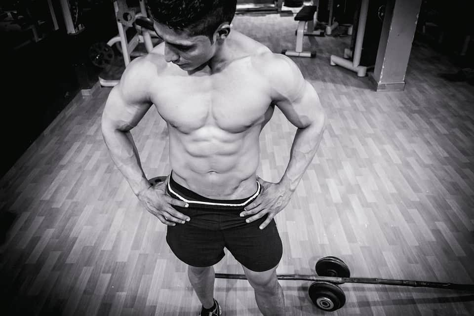 Visual Impact Muscle Building Plan
