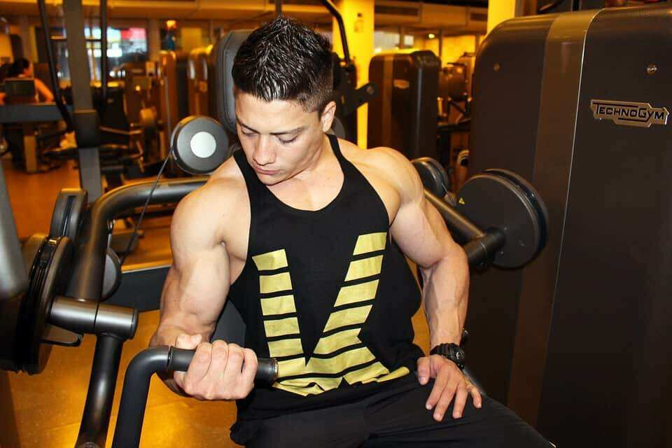 Visual Impact Muscle Building Workouts